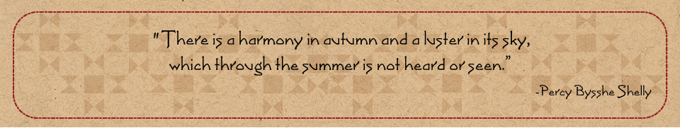 Autumn Sky quote