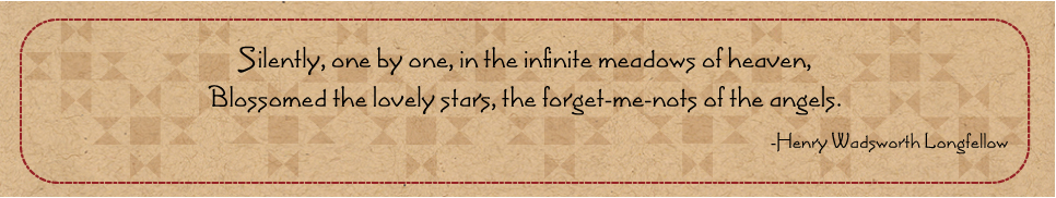 stars and meadows quote